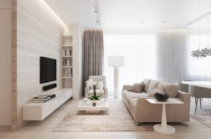 classy living room under budget